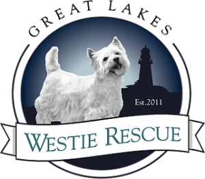 Great Lakes Westie Rescue logo